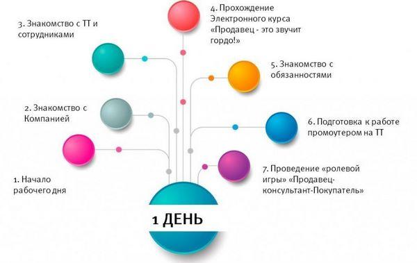 Схема первого этапа стажировки