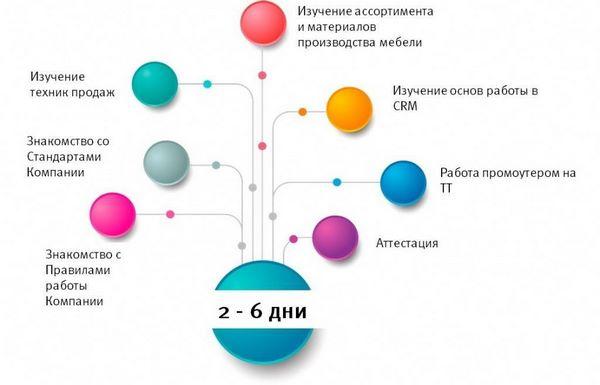 Схема второго этапа стажировки