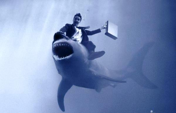 является картинки акул бизнеса и власти иногда, крайне редко